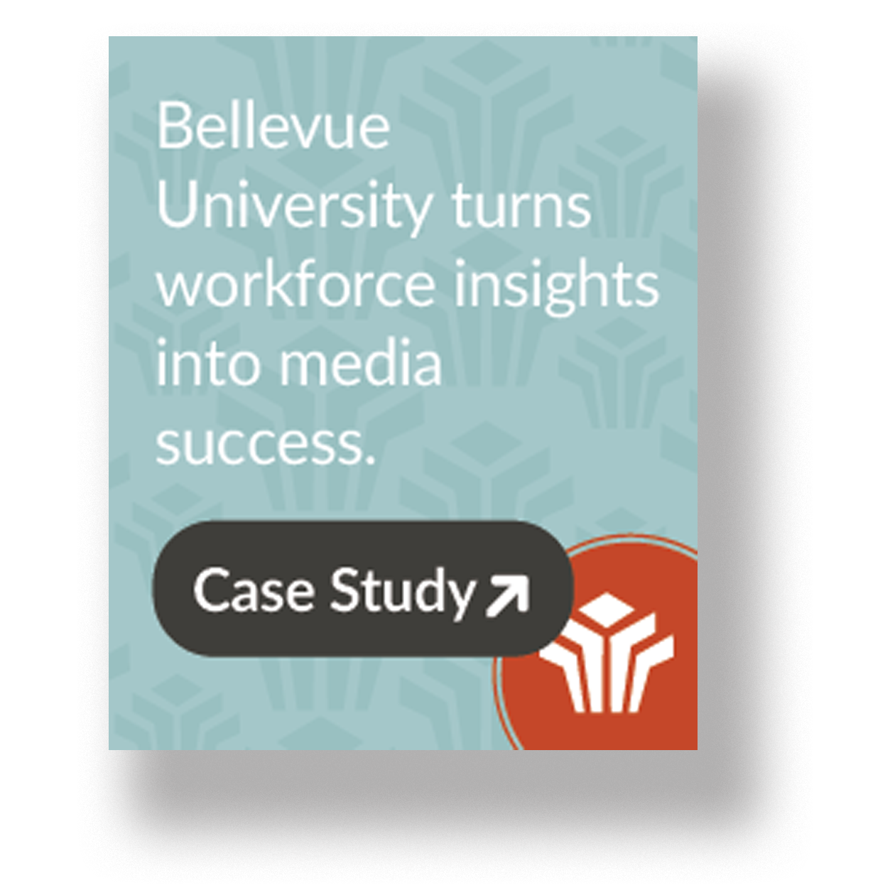 Jones case study bellevue university