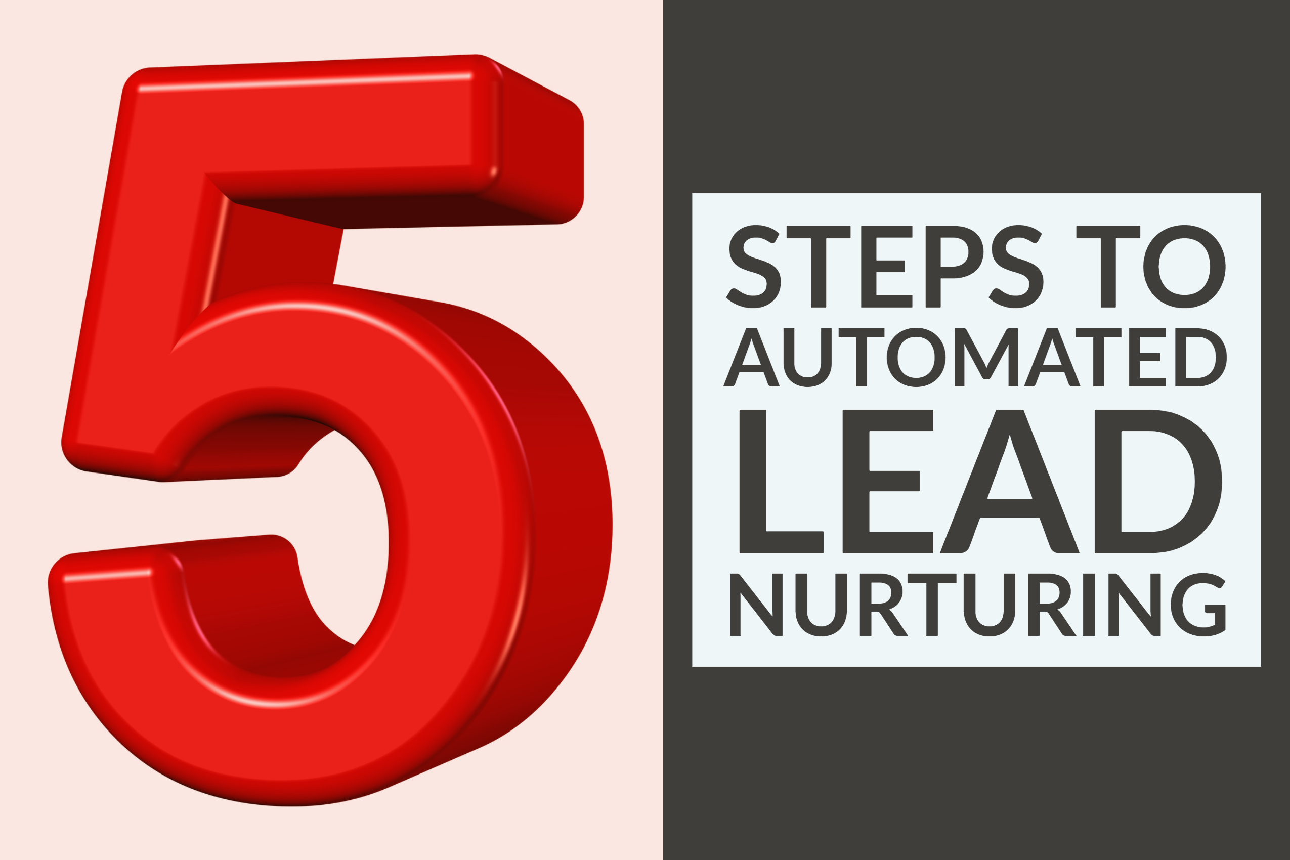 5 Steps To Automated Lead Nurturing