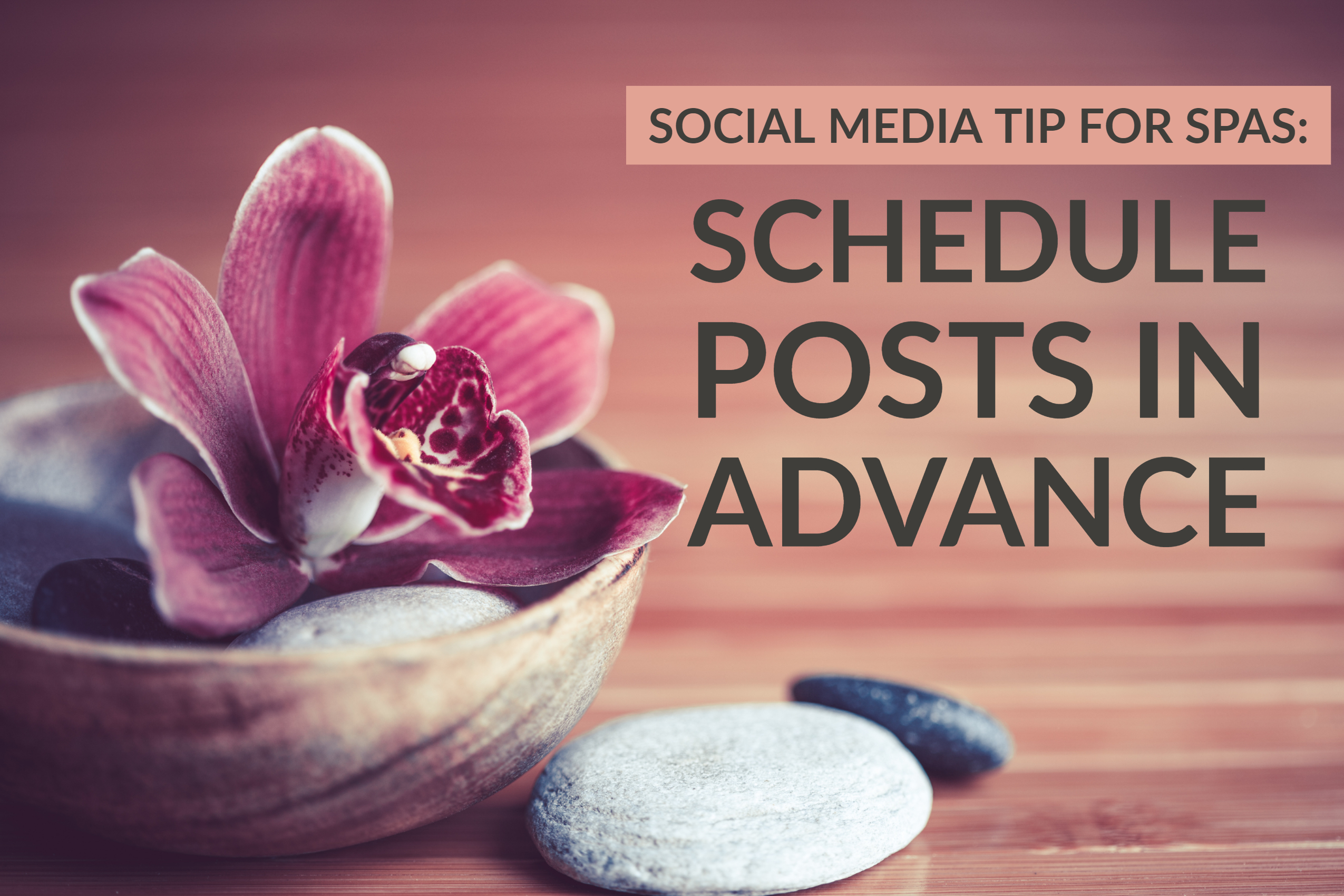 Social Media Tip For Spas_ Schedule Posts In Advance